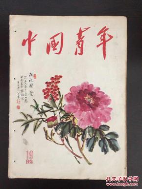 中国青年1956年第19期