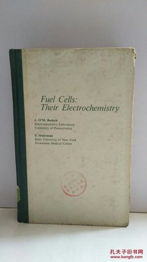 Fuel Cells:Their Electrochemistry 燃料电池电化