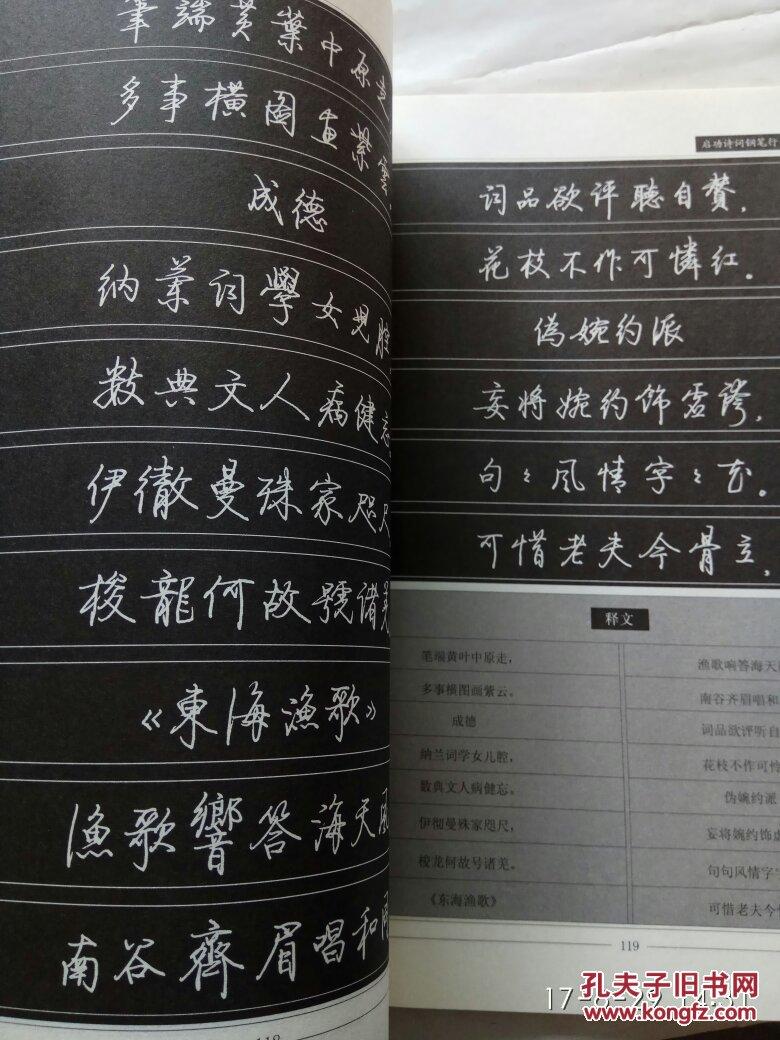 启功诗词钢笔行书字帖. 第一辑 第二辑合售图片