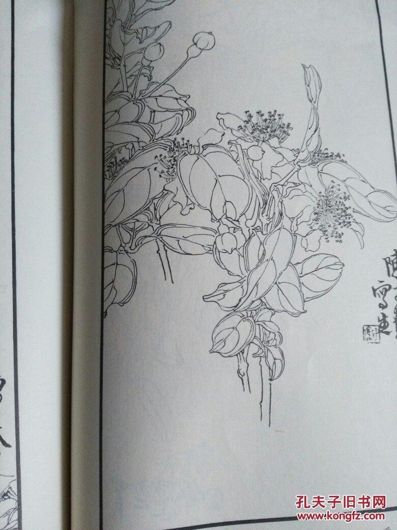 陈子奋白描花卉册 近九品 见描述图片