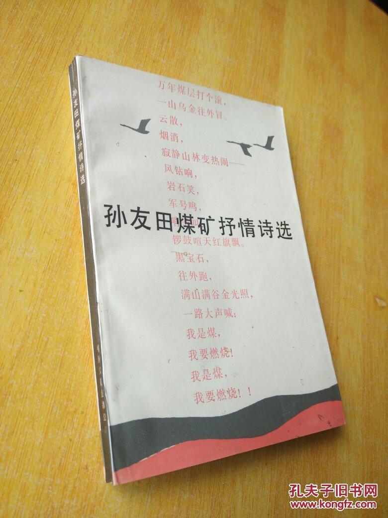 孙友田煤矿抒情诗选