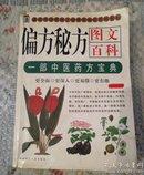 徧方秘方图文百科(一部中医药方宝典)