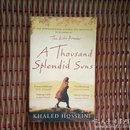 The thousand splendid suns