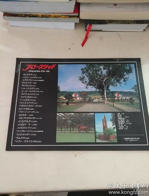 日文 种马图册 STALLIONS FOR 1998 详细看图