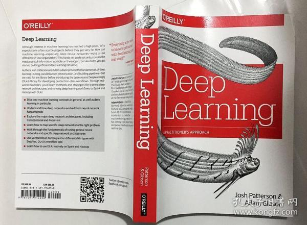 Deep Learning:A Practitioner's Approach  深度学习:从业者的方法