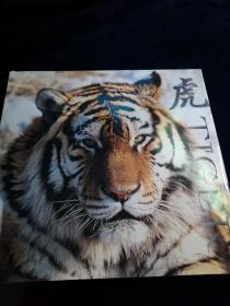 虎TIGER(12开精装)品好