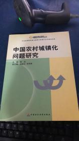 中国农村城镇化问题研究