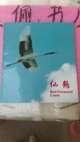 仙鹤Red-Crowned Crane