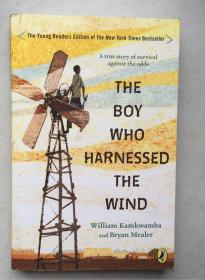 THE BOY WHO HARNESSED THE WIND锛堝ぇ32寮�骞宠鏈級