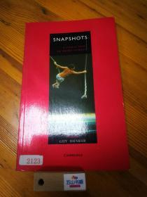 SNAPSHOTS(外文原版)/A collection of short stories