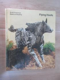外文书  FLYING  HOOFS  SCOTT,  FORESMAN  BASICS  IN  REDING(共544页,精装)