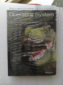 现货  Operating System Concepts 10ed (EPUB Reg Card + Abridged Print Companion Set) Abraham Silberschatz 英文原版 现代操作系统概念 基本原理与实践 基础技术