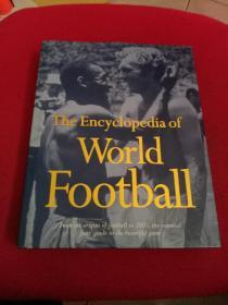 The  Encyclopedia  of  World  Football (精装)