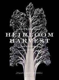 Heirloom Harvest: Modern Daguerreotypes