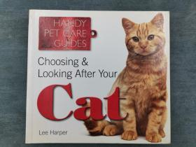 Choosing & Looking After Your Cat (Handy Petcare Guides)