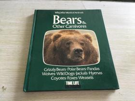 Bears and Other Carnivores: Based on the Television Series Wild, Wild World of Animals...//
