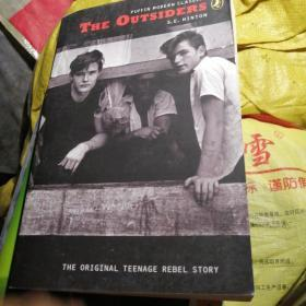 The Outsiders (Puffin Modern Classics) 局外人 9780141314570
