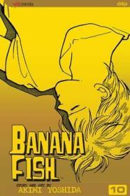 Banana Fish, Vol. 10