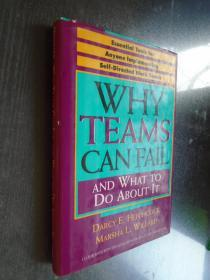 Why Teams Can Fail and What To Do About It: Essential Tools for Anyone Implementing Self Directed Work Teams 英文原版精装