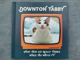 Downton Tabby: What Your Cat Really Thinks While You Watch TV