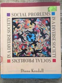 Social Problems In A Diverse Society (critical Perspectives On Asian Pacific)