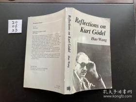 Reflections on Kurt Godel