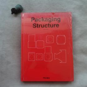 Packaging Structure Vector 1DVD