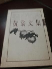 黃裳文集(5)雜說卷