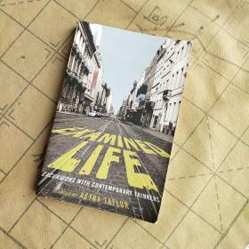 Examined Life:Excursions with Contemporary Thinkers