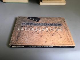 文體學叢書:文體演變及其文化意味
