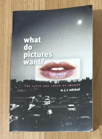 What Do Pictures Want?: The Lives and Loves of Images 图像何求?:形象的生命与爱