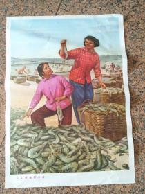 B242、人工養殖獲豐收、董家祥畫,山東人民出版社1974年6月1版1印,規格2開,95品。