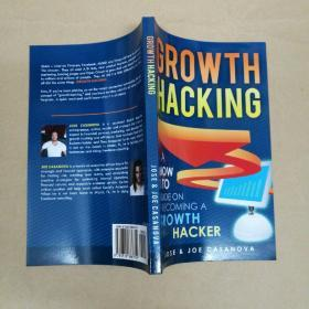 Growth Hacking:A How To Guide On Becoming A Growth Hacker 成长黑客:如何成为成长黑客的指南