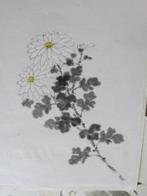 《菊》日本回流小畫