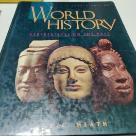 world history  perspectives on The past