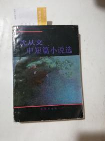 沈從文中短篇小說選(少許水印)