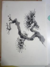 《松樹》日本回流小畫