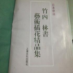 日本華道:竹內林書藝術插花精品集(沒有書衣)