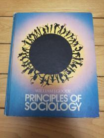WILLAMJ.GOODE《 PRINCIPLES OF SOCIOLOGY》威廉·古德《社会学原理》