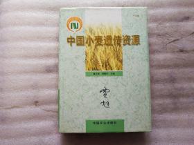 中國小麥遺傳資源【 作者 簽贈本】精裝 書口有字