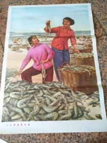 B252、人工養殖獲豐收、董家祥畫,山東人民出版社1974年6月1版1印,規格2開,95品。