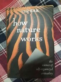 How Nature Works: The Science of Self-Organized
