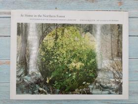 At Home in the Northern Forest: Photographs of the Changing Vermont Landscape 佛蒙特州不断变化的风景照片