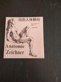 动态人体解剖