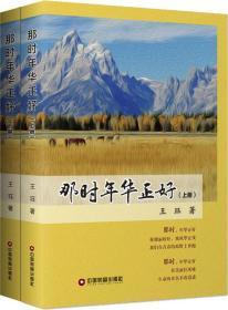 那時年華正好(2冊) 王玨 著 新華文軒網絡書店 正版圖書