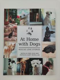 at home with dogs rescue love stories