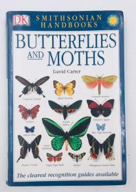 Butterflies & Moths: The Clearest Recognition Guide Available (DK Smithsonian Handbook)