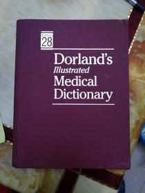 Dorland's  llⅠustrated  Medical  Dictionary(多兰医学插图词典)    重3.08公斤