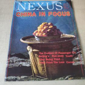 CHINA IN FOCUS    1988
