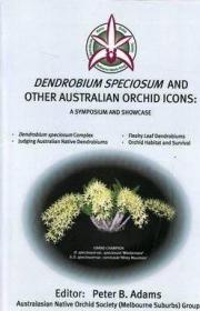 Dendrobium Speciosum and Other Australian Orchid Icons-石斛和其他澳大利亚兰花的象征
